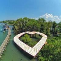 jembatan api mangrove